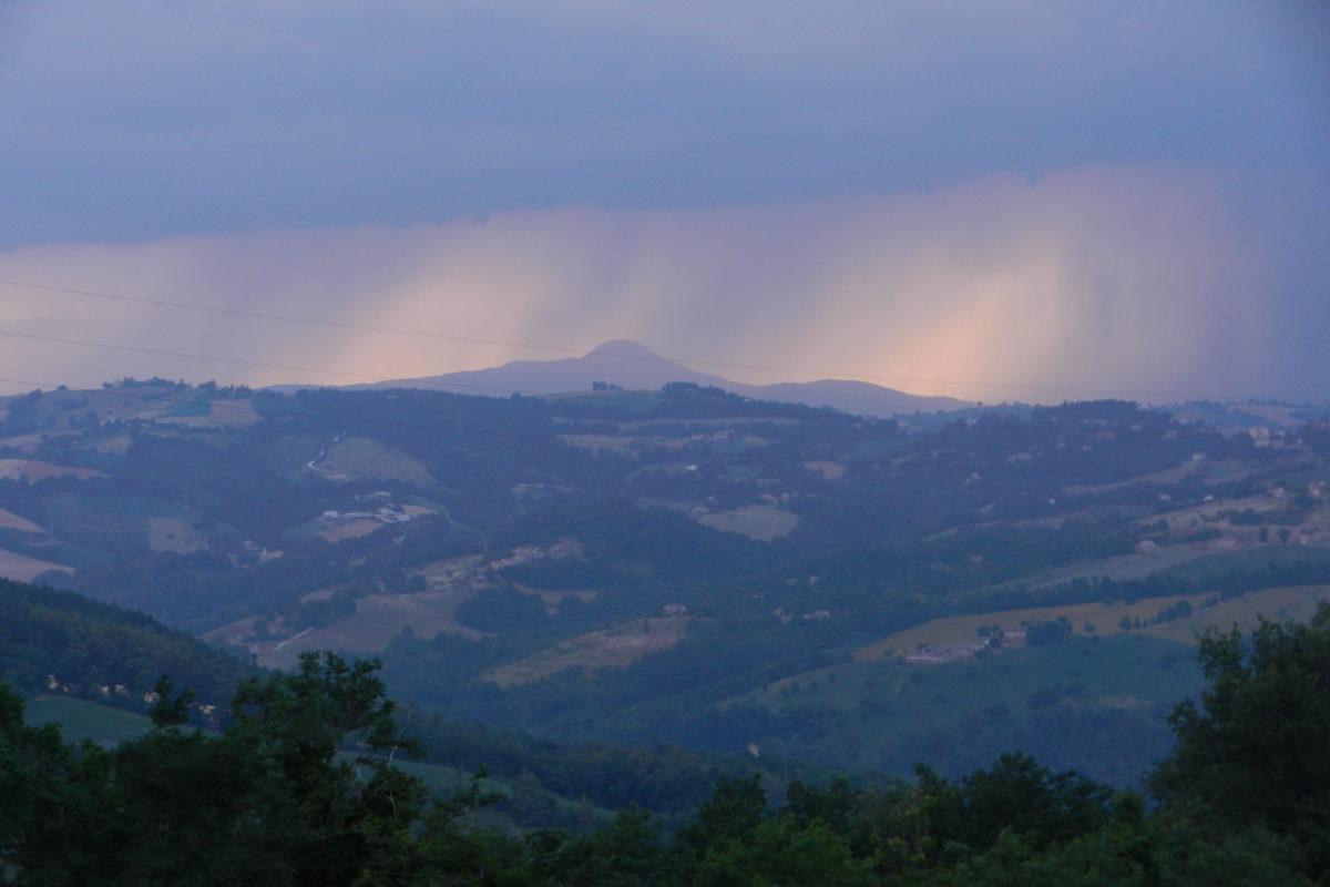 Aiuto economico erogato agli apicoltori dalla Regione Marche