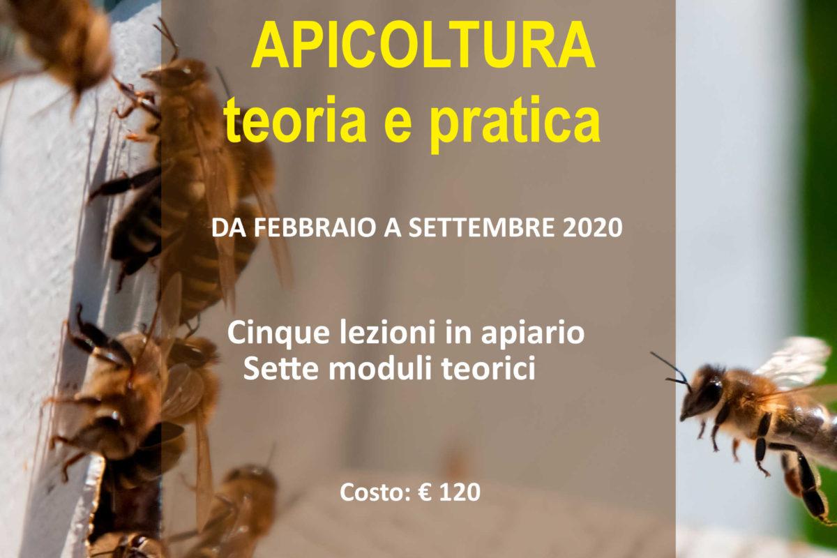 CORSO DI APICOLTURA 2020