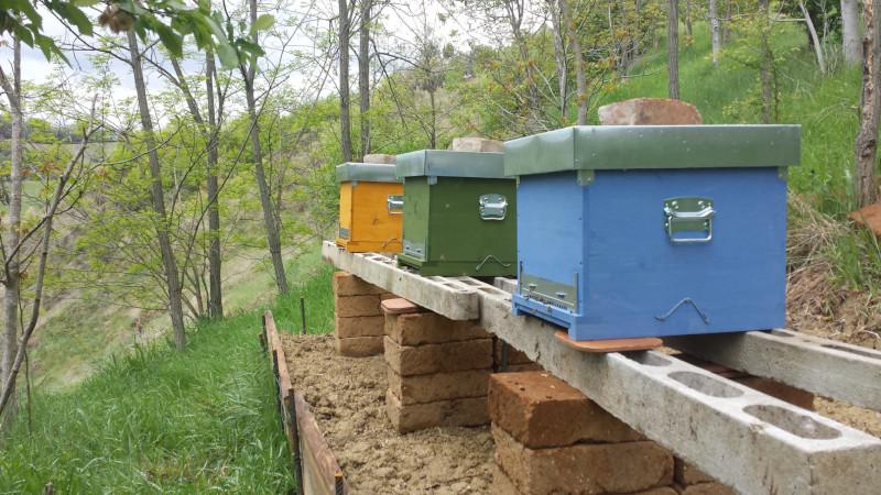 primi passi e considerazioni su come realizzare il primo apiario. Luogo, materiali, accorgimenti. Una piccola guida pratica da una esperianza personale